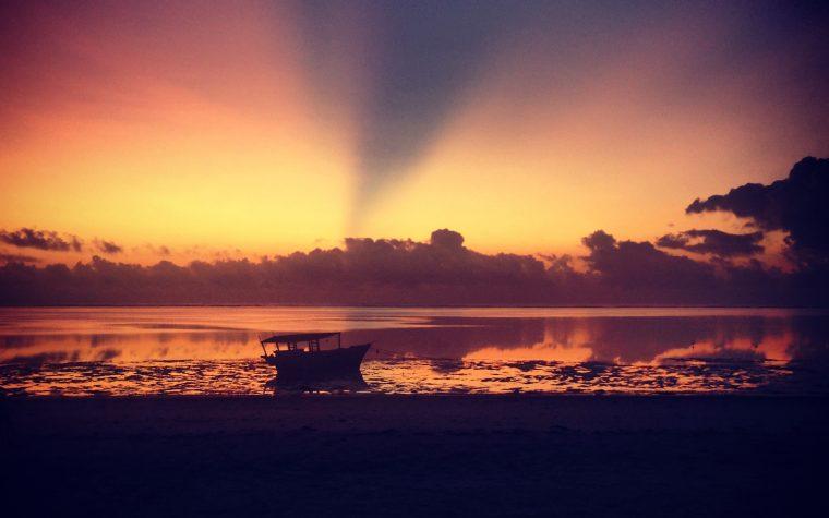 Zanzibar = Raiul pe pamant